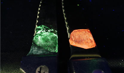Invisible fingerprints on knives show up when crystals are applied to the surface. Photo credit: CSIRO.