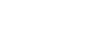 The Mobile Enterprise