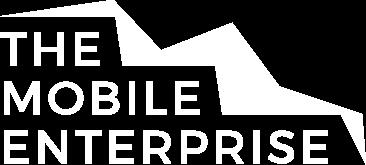 The Mobile Enterprise