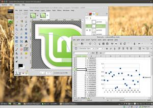 The General Image Manipulation Program (GIMP) and LibreCalc Spreadsheet on the Cinnamon desktop.