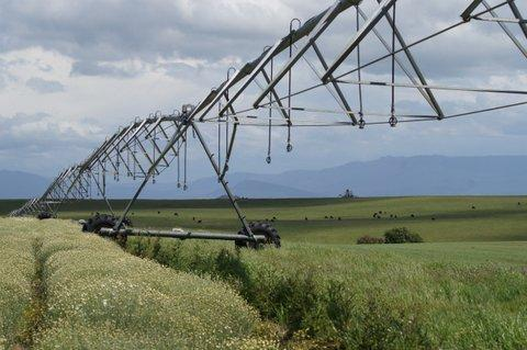An irrigation system in Tasmania. Credit: Dare Electrical
